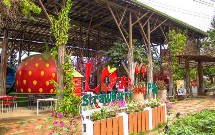 Things to do in Pai Strawberry Zipline