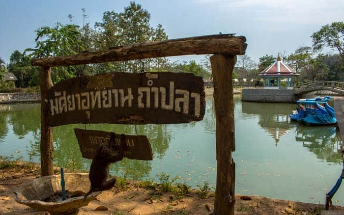 Chiang Rai things to do - Monkey Cliff