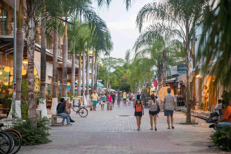 Playa del Carmen for Digital Nomads